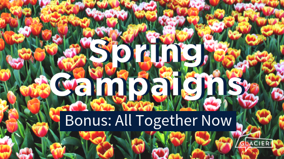 Blog_Header_Spring Campaigns_Bonus: All together now_Bright tulip background
