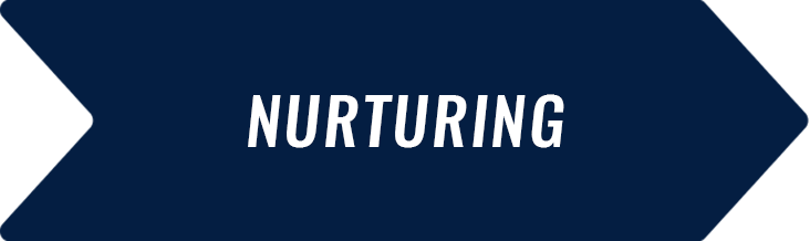 The importance of nurturing for higher education marketers